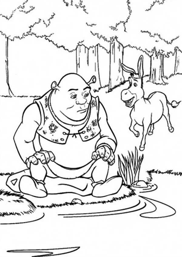 Shrek and Donkey at Side of Lake