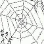 Spider, A Spider Couple On The Edge Of Spider Web Coloring Page: A Spider Couple on the Edge of Spider Web Coloring Page