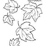 Fall Leaf, Autumn Fall Leaf Coloring Page: Autumn Fall Leaf Coloring Page