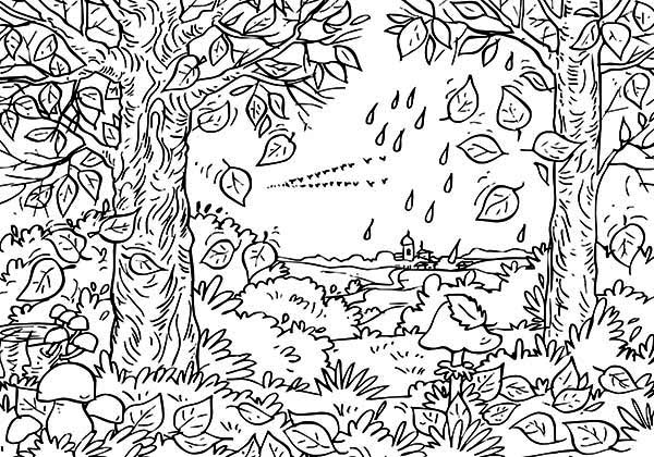 Fall Leaf, : Autumn Fall Leaf in the Forest Coloring Page