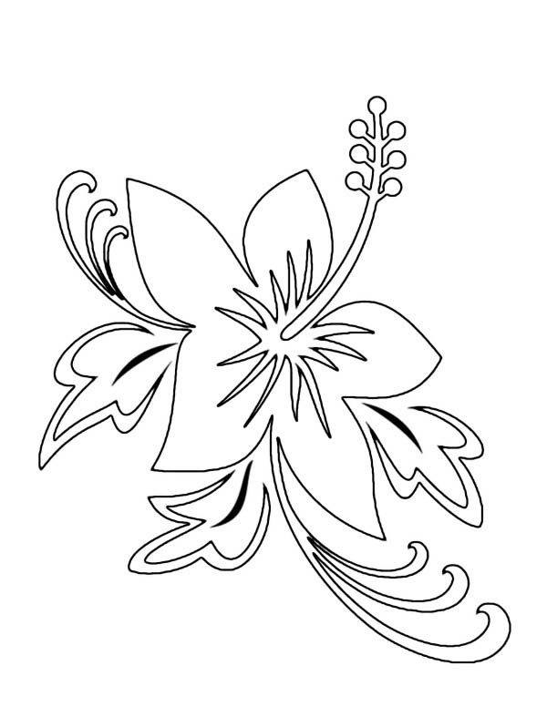 Hibiscus Flower, : Beautiful Hawaii State Flower Hibiscus Flower Coloring Page