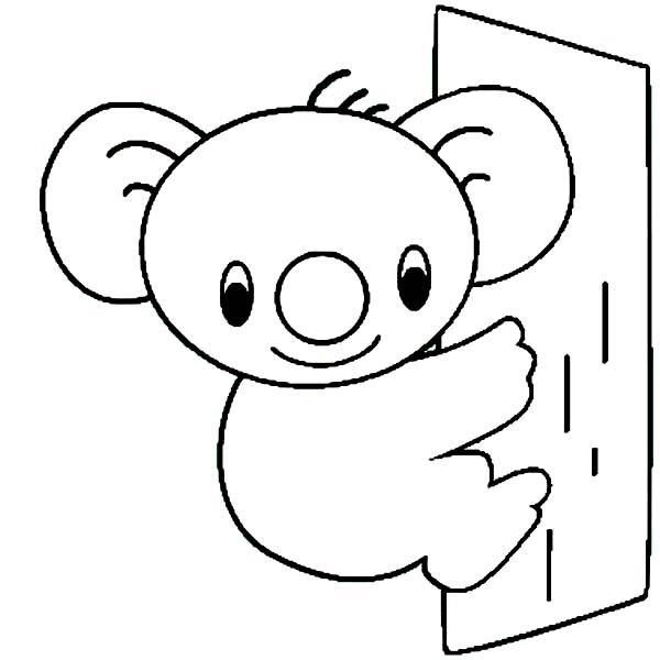 Koala Bear, : Cute Koala Bear Coloring Page