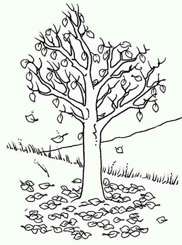 Fall Leaf, : Fall Leaf Up on the Hill Coloring Page