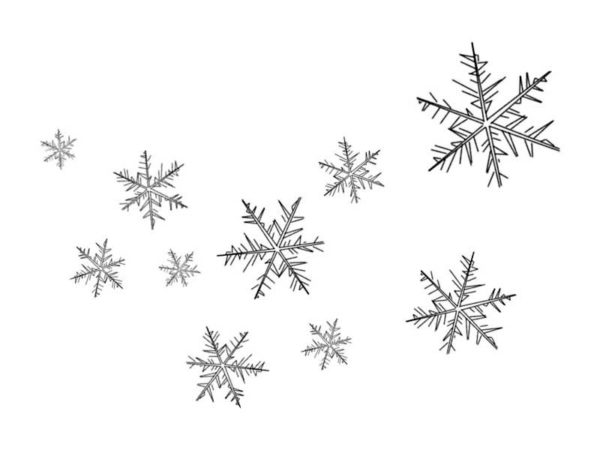 Snowflakes, : Floating Snowflakes Coloring Page