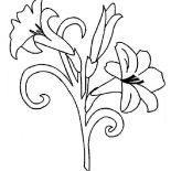 Flower Bouquet, Flower Bouquet Picture Coloring Page: Flower Bouquet Picture Coloring Page
