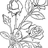 Flower Bouquet, Flower Bouquet Is Made Of Roses Coloring Page: Flower Bouquet is Made of Roses Coloring Page