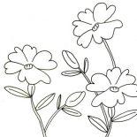 Hibiscus Flower, Flower In My Garden Coloring Page: Flower in My Garden Coloring Page
