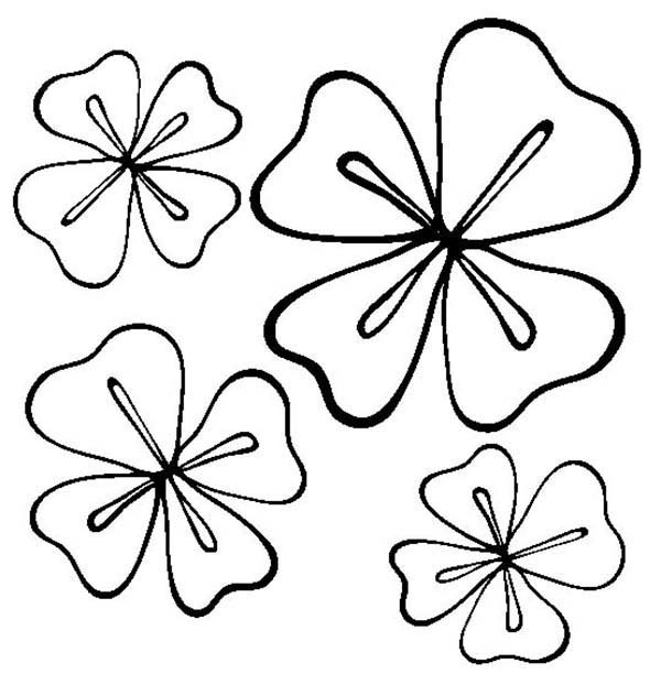 Four-Leaf Clover, : Four Four-Leaf Clover for a Good Luck Coloring Page