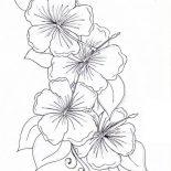 Hibiscus Flower, Hibiscus Flower Drawing Coloring Page: Hibiscus Flower Drawing Coloring Page