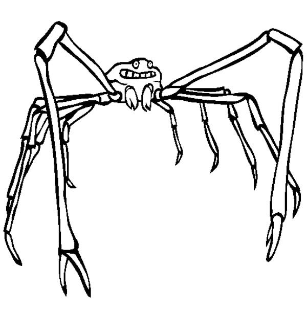 Japanese Spider Crab Coloring Page : Color Luna