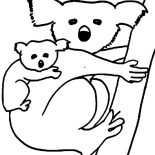 Koala Bear, Koala Bear Carrying Her Baby Coloring Page: Koala Bear Carrying Her Baby Coloring Page