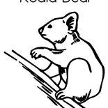 Koala Bear, Koala Bear Image Coloring Page: Koala Bear Image Coloring Page