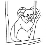 Koala Bear, Koala Bear Outline Coloring Page: Koala Bear Outline Coloring Page