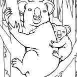 Koala Bear, Koala Bear In The Jungle Coloring Page: Koala Bear in the Jungle Coloring Page