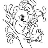 Koala Bear, Koala Bear With Bird Coloring Page: Koala Bear with Bird Coloring Page
