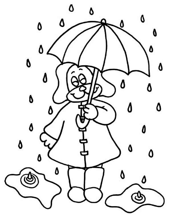 Raindrop, : Little Puppy Under Raindrop with Umbrella Coloring Page