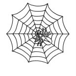 Spider, Little Spider On Spider Web Coloring Page: Little Spider on Spider Web Coloring Page