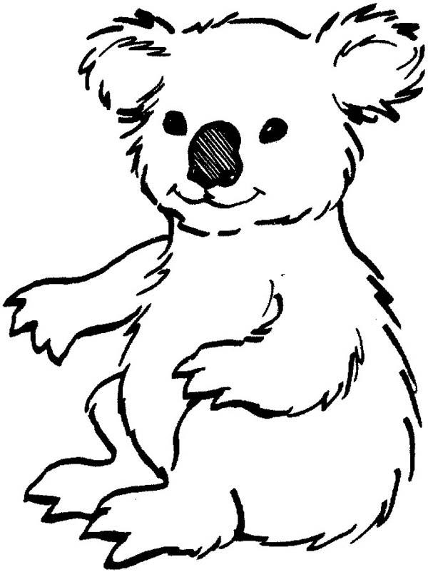 Koala Bear, : Loving Koala Bear Coloring Page