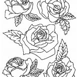 Flower Bouquet, Picture Of Roses For Flower Bouquet Coloring Page: Picture of Roses for Flower Bouquet Coloring Page