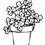 Four-Leaf Clover, Rare Four Leaf Clover On Common Three Leaf Clovers Coloring Page: Rare Four-Leaf Clover on Common Three-Leaf Clovers Coloring Page