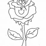 Flower Bouquet, Rose Flower Bouquet Coloring Page: Rose Flower Bouquet Coloring Page