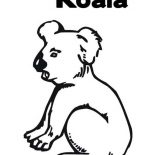 Koala Bear, Thirsty Koala Bear Coloring Page: Thirsty Koala Bear Coloring Page