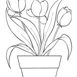 Flower Bouquet, Tulips For Flower Bouquet Coloring Page: Tulips for Flower Bouquet Coloring Page