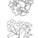 Flower Bouquet, Various Flowers For Flower Bouquet Coloring Page: Various Flowers for Flower Bouquet Coloring Page