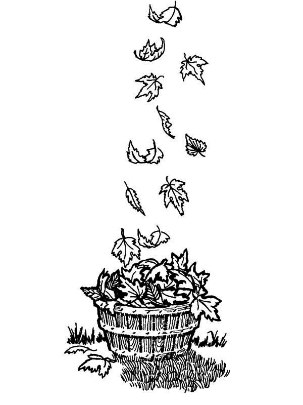 Fall Leaf, : Wooden Bucket Full of Fall Leaf Coloring Page