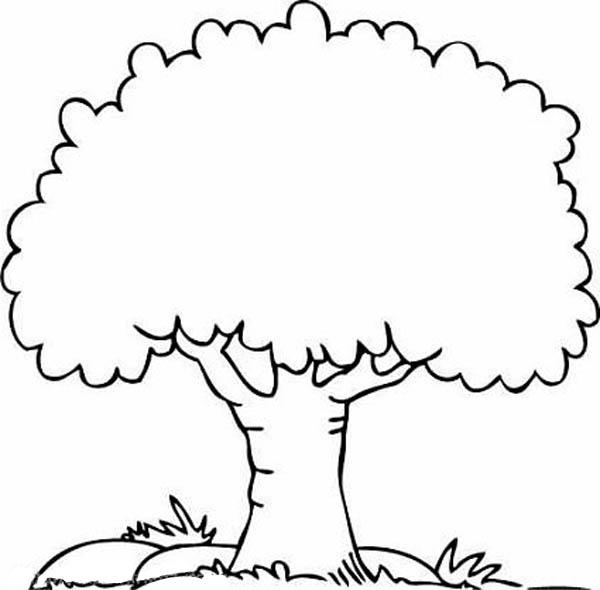 Oak Tree, : A Shady Oak Tree Coloring Page