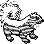 Skunk, Amazing Stripped Skunk Coloring Page: Amazing Stripped Skunk Coloring Page