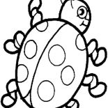 Lady Bug, Awesome Lady Bug Coloring Page: Awesome Lady Bug Coloring Page