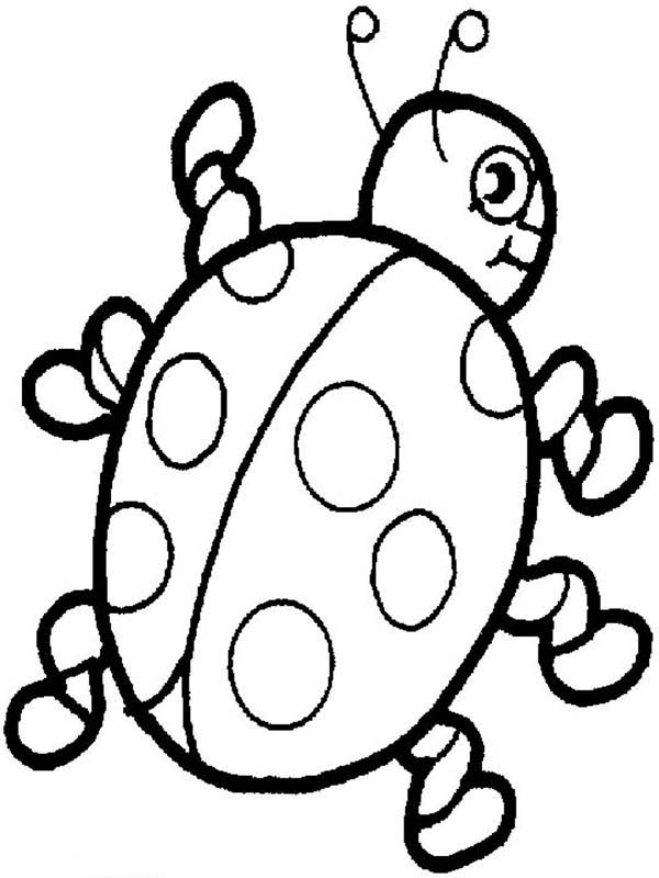 Lady Bug, : Awesome Lady Bug Coloring Page