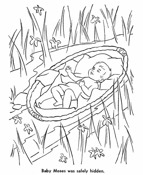 Moses, : Baby Moses Safely Hidden from Pharaoh Army Coloring Page