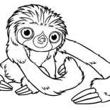 Sloth, Baby Sloth Coloring Page: Baby Sloth Coloring Page