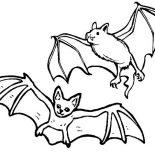 Bats, Bats Couple Coloring Page: Bats Couple Coloring Page