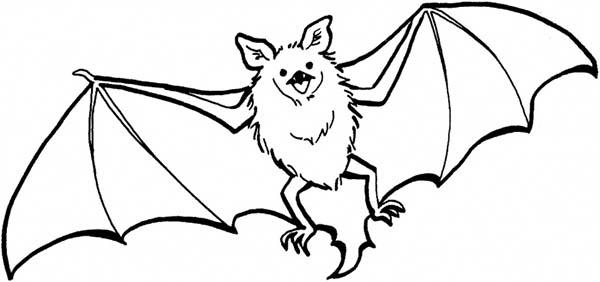 Bats, : Bats Flying Coloring Page
