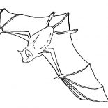 Bats, Bats Flying Upside Down Coloring Page: Bats Flying Upside Down Coloring Page