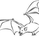 Bats, Bats Hunt For Food Coloring Page: Bats Hunt for Food Coloring Page