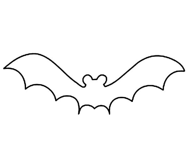 Bats, : Bats Outline Coloring Page
