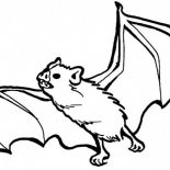 Bats, Bats Sharp Teeth Coloring Page: Bats Sharp Teeth Coloring Page