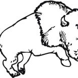 Bison, Bison Running Wild Coloring Page: Bison Running Wild Coloring Page