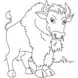 Bison, Bison Standing Still Coloring Page: Bison Standing Still Coloring Page