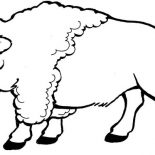 Bison, Bison Walking Around Coloring Page: Bison Walking Around Coloring Page