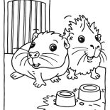 Guinea Pig, Cute Baby Guinea Pig Coloring Page: Cute Baby Guinea Pig Coloring Page