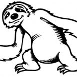 Sloth, Cute Little Sloth Coloring Page: Cute Little Sloth Coloring Page