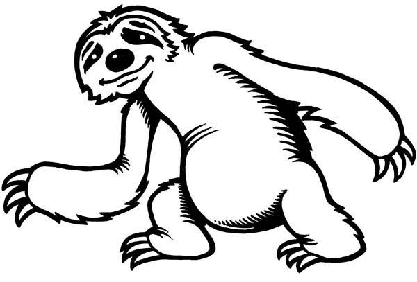 Cute Little Sloth Coloring Page : Color Luna
