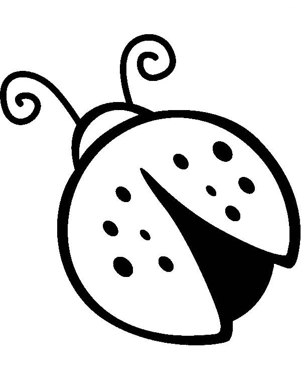 Lady Bug, : Drawing of Lady Bug Coloring Page