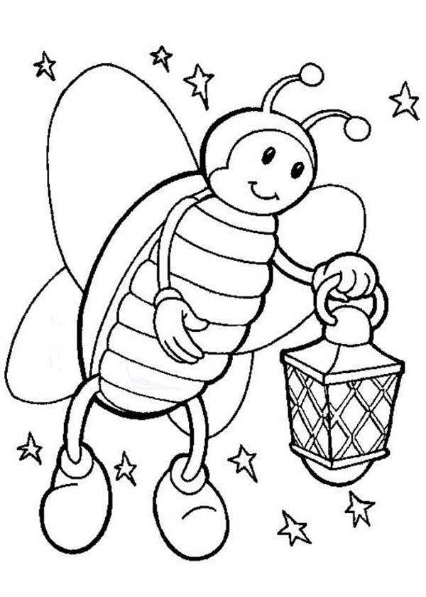 Firefly, : Firefly on Starry Night Hold a Lamp Coloring Page