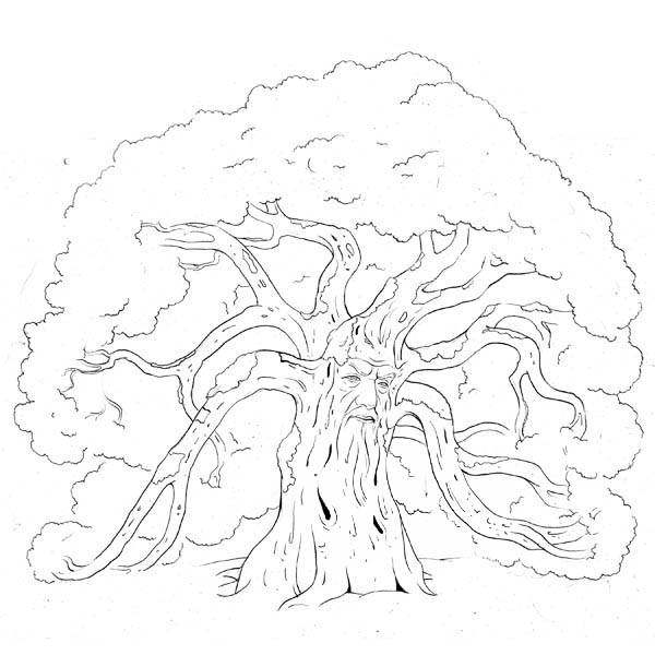 Oak Tree, : Forest Guard Oak Tree Coloring Page